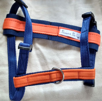 Two-tone harness set